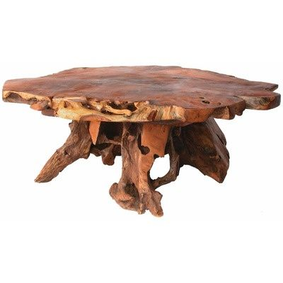 Tree Stump Coffee Table Decorating ideas Adventure