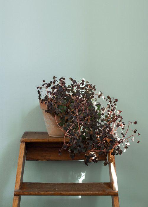 Auro 321 Turkos Patricia - Inspiration: Auro ekologisk färg och ytbehandling