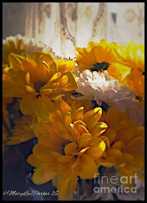 http://fineartamerica.com/featured/1-flowers-for-you-marylee-parker.html?newartwork=true# sale #Flowers for you