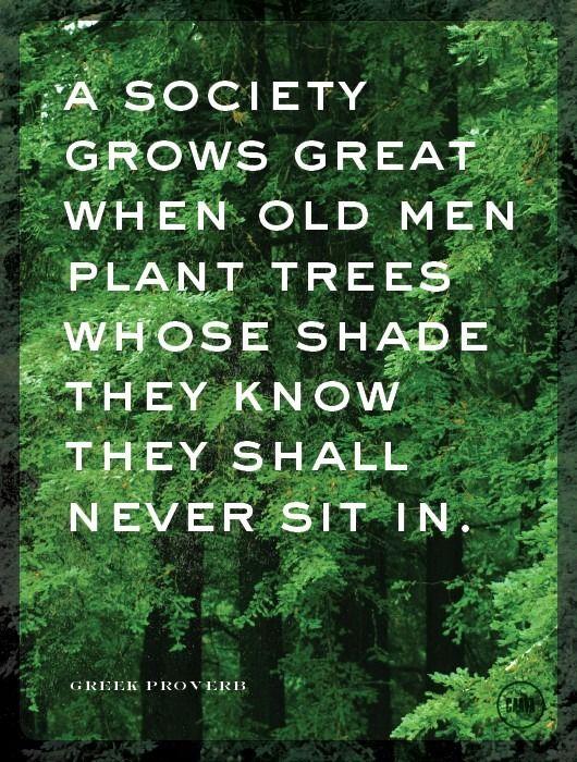 Plant Trees...: