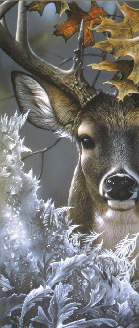 Thunder Mountain Press :: Wildlife Art Magazine • Jerry Gadmus artist