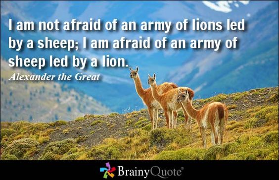 I am not afraid of an army of lions led by a sheep; I am afraid of an army of sheep led by a lion. - Alexander the Great #wisdom #QOTD