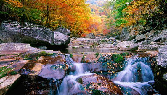 Thiên nhiên kỳ vĩ ở Jirisan
