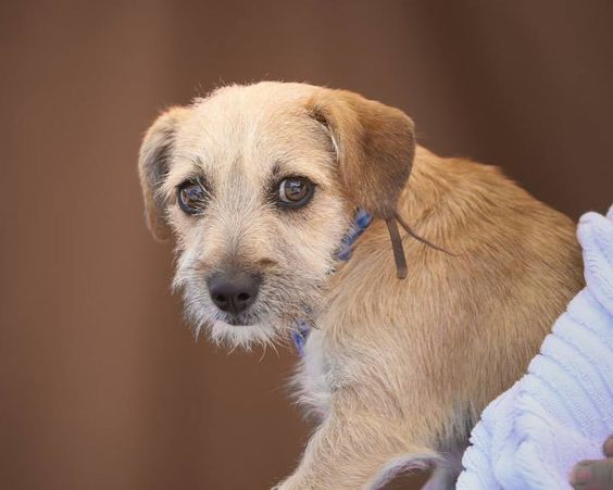 URGENT - DUMPED BY THE ONE - WHY STILL IN CONTACT?