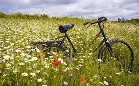 andar en bici por el campo