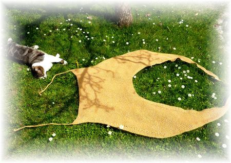 shawl to sew as I cannot knit or crochet. By Beno