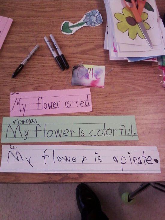 It's An Arrrzalea: Kindergarten Class, Funny Stuff, Funny Kids, Pirate Logically, Clean Humor, Pirate Flowers, Favorite Flower