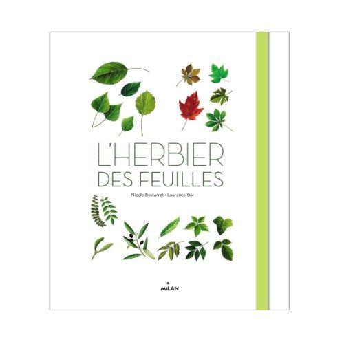 Cet herbier permet aux enfants comme aux adultes de découvrir de multiples espèces d'arbres et d'apprendre à les reconnaître.