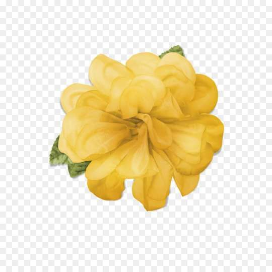 15 Flower Crowns Png Yellow Crown Png Red Flower Crown Flower Crown