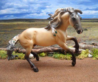 Spanish Mustang Horses | Spanish Mustang Mare