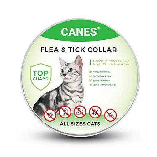 New Flea And Tick Collar For Cats Over All Size 8 Month Protection Free Shipping Canes Cat Fleas Tick Prevention Fleas