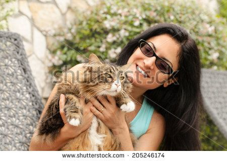 Beautiful smiling brunette woman holding huge scared Maine Coon Cat. - stock photo