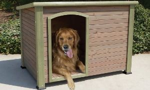 Groupon - Extreme Log Cabin Dog Houses in [missing {{location}} value]. Groupon deal price: $69.99