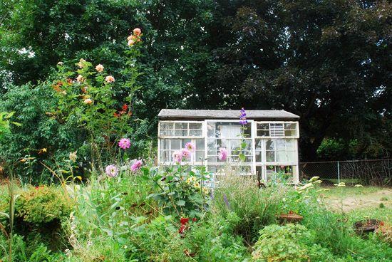 dreamy backyard | jena coray dream job interview