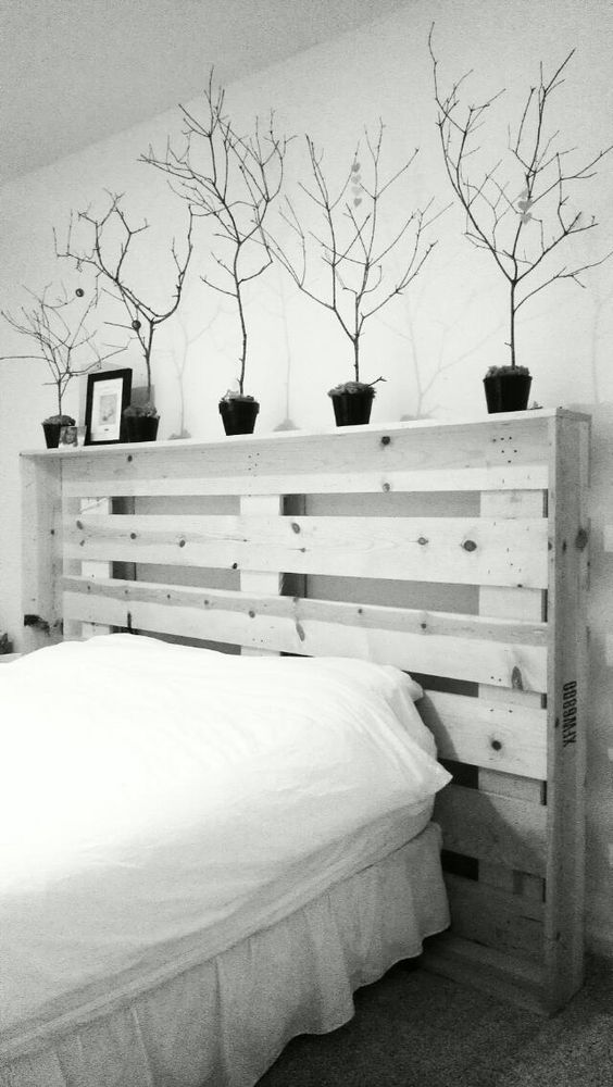 By Cedeebug. My large upcycled pallet turned headboard. Soon to be weather distressed. Love the depth & additional decorative space it provides & just love the serenity the branches provide let alone there shadow casts!! :)