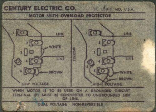 Ac motor sd picture wiring diagram wiring diagram century motor wiring diagram caferacersjpg com rh caferacersjpg com ac brush motor wiring diagram electric motor wiring diagram ccuart Choice Image