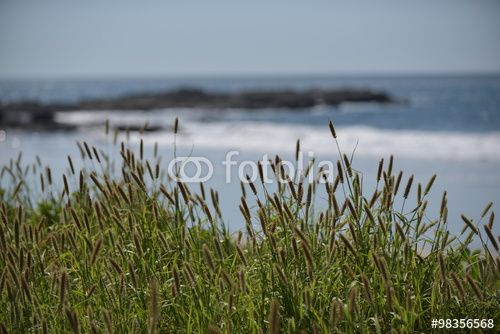 Playa Junquillal in Costa Rica