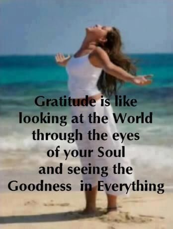 Gratitude is like looking at the world through the eyes of your soul and seeing the goodness in everything!