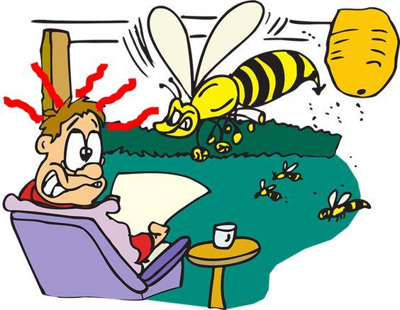 Wespen bestrijden en verjagen