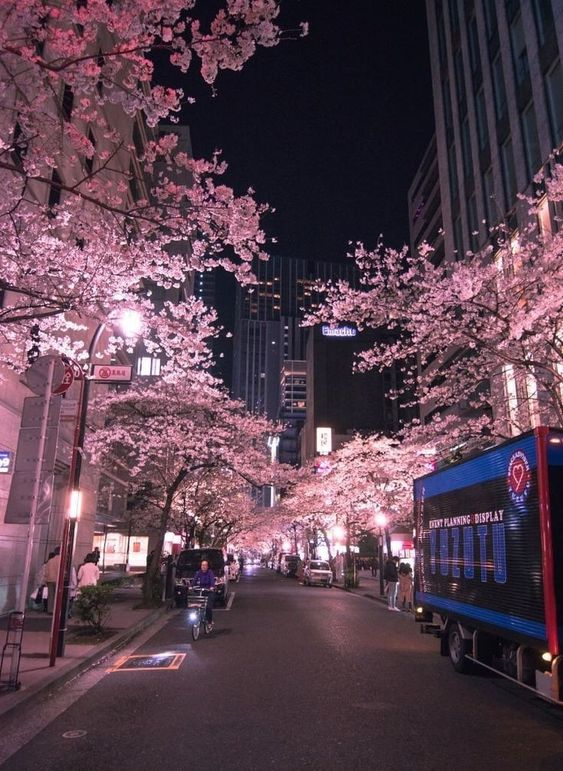 Past The Cold Winter Until The Spring Day Comes Aesthetic Japan City Aesthetic Japan Aesthetic