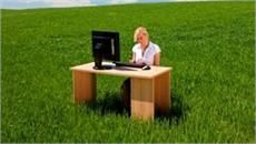 8 Ways To Green Your Office Today