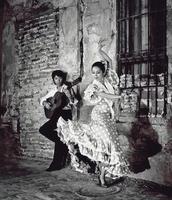 Flamenco by Gilles Larrain, via Behance