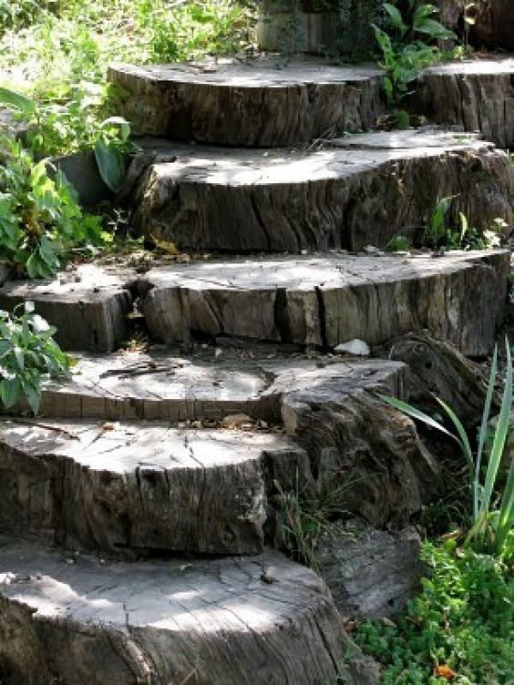 Best Tree Stump Steps Backyard Ideas Pinterest Garden 400 x 300