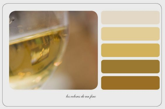 Color of #Jerez #fino