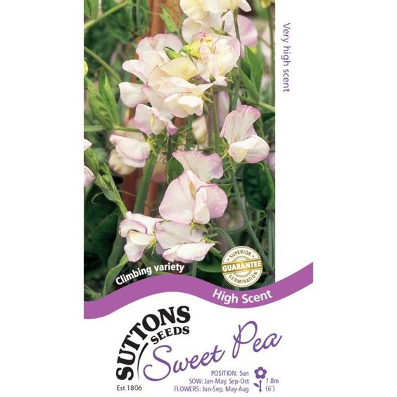 Sweet Pea Seeds - High Scent - Suttons Seeds and Plants