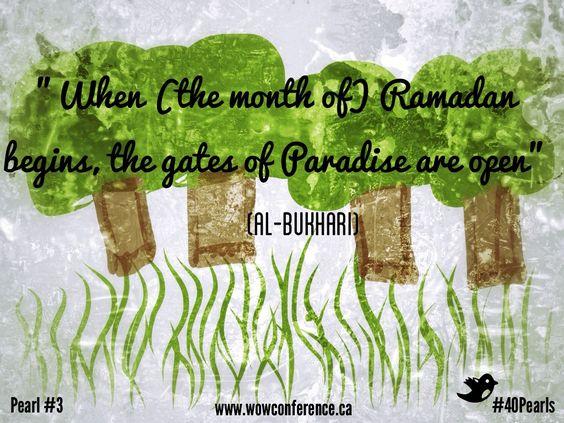 Words of Wisdom #40Pearls #Ramadan2013 #wowconference Pearl #3