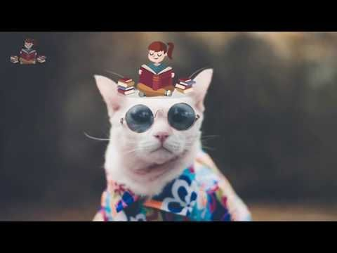 معلومات عامة ومفيدة عن حيوان القط للأطفال من قناة راويتي تروي قصة Youtube Fictional Characters Character Art