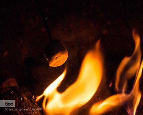 Perfection by miles-home  IFTTT 500px camping cooking dessert fire marshmallow tasty