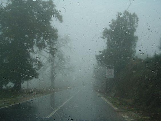 Chuva rápida marca sexta-feira no Estado : Blog Juliana Lima