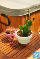 Adding a personalized touch to your patio can be a great way to make your spa area even more enjoyable. I decided to spruce up our patio space with some colorfully painted terra cotta pots. Supplies you will need: • Terra Cotta Pots – I picked out a couple different...