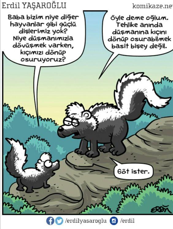Erdil YaÅŸaroÄŸlu