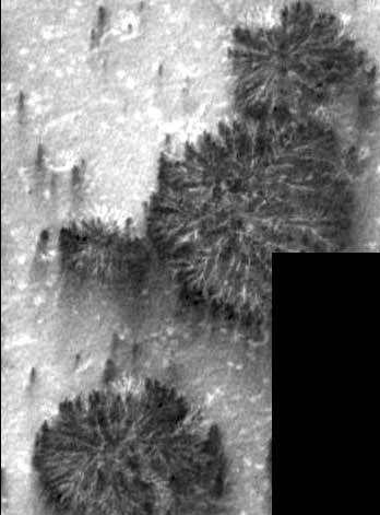 Agua, vida y civilizaciones en Marte C9a4bed8c352dcb17474e86ab14c3e5c