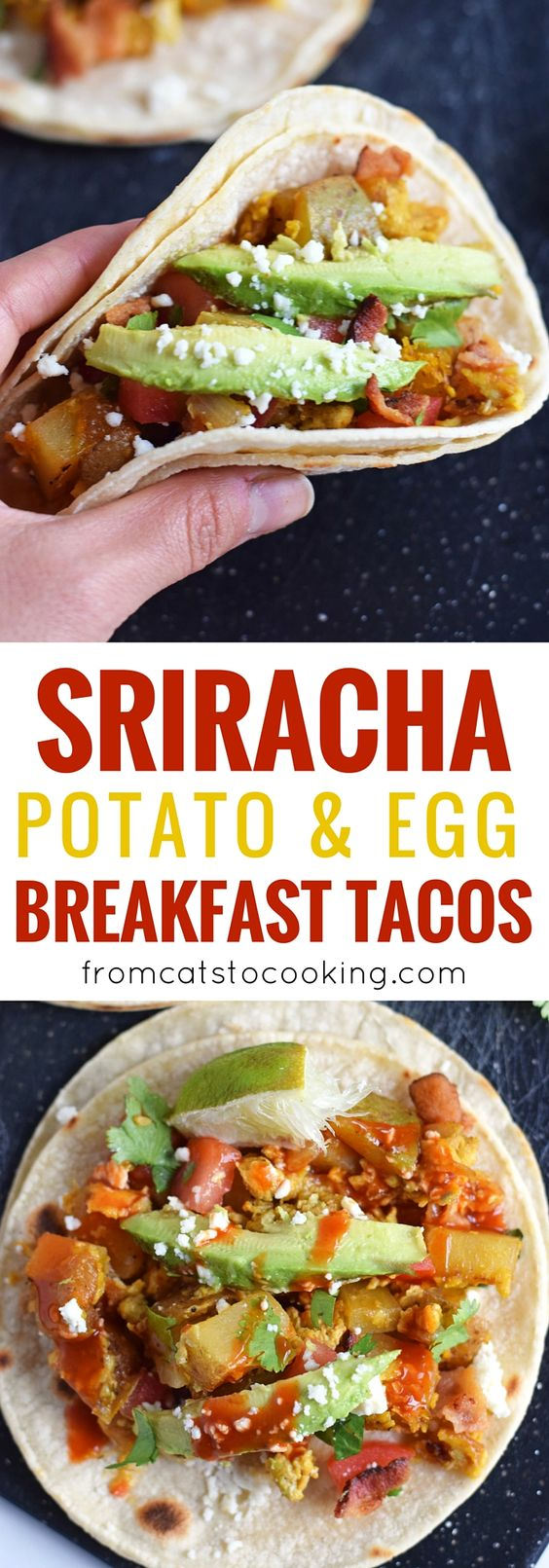 ... eggs paleo brunch breakfast tacos tacos dishes brunch recipes recipe