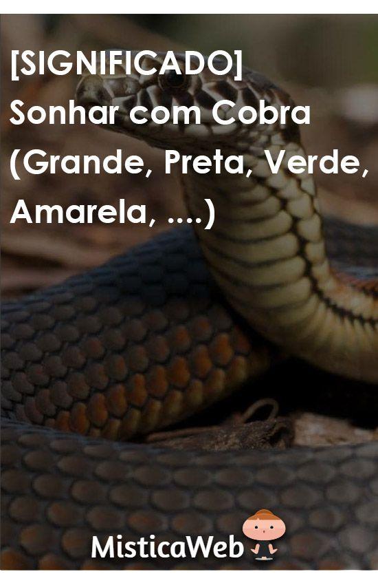 Todos Os Significados De Sonhar Com Cobra Grande Preta Verde