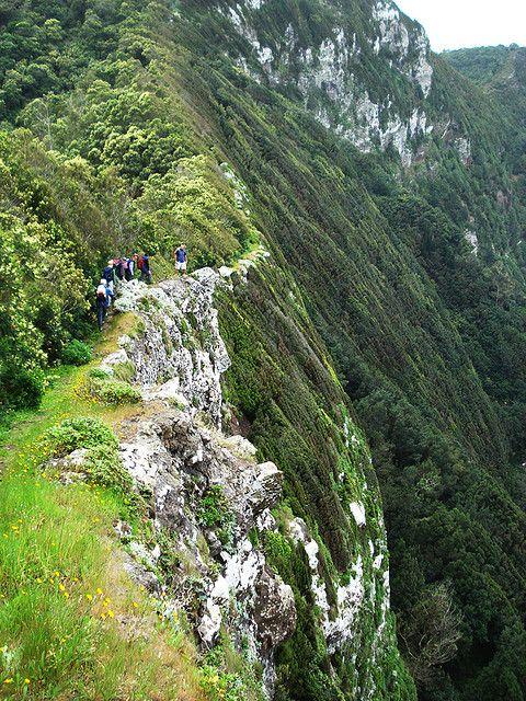 Wandelen op Madeira - tips en informatie op http://www.naturescanner.nl/europa/portugal/madeira/activiteiten/wandelen-op-madeira/77