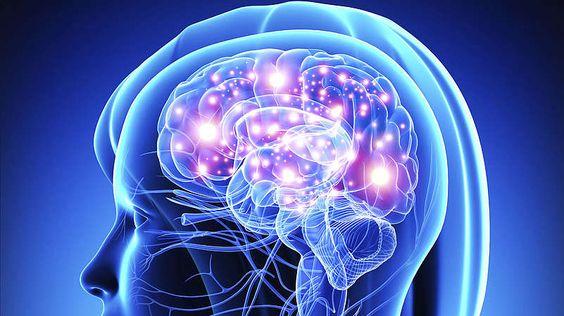 Tod der Neuronen-Stirbt ein Mensch aufgrund von Sauerstoffmangel, schalten sich als Erstes der Neocortex und die Kommunikation zwischen den Gehirnarealen aus. Wir erleben diesen Zustand als Bewusstlosigkeit. Bleibt der Sauerstoff weiter aus, stellen auch die anderen Areale ihre Aktivität ein.