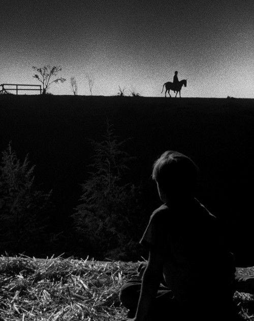 Night of the Hunter (Charles Laughton, 1955).Pour réaliser ce plan, le studio n'étant pas assez spacieux, Laughton et son chef opérateur ont fait tourner un enfant sur un poney afin de créer l'illusion de perspective.