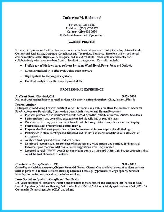 internal auditor resume best template collection rakesh kumar - sample auditor resume