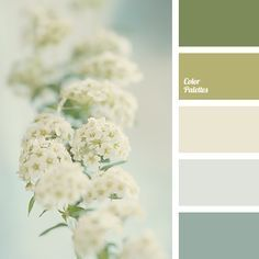 Spring pale beige is the colour of first flowers, it is shaded by brighter olive shades. Two gray shades are useful for transitions. It is a great option f.
