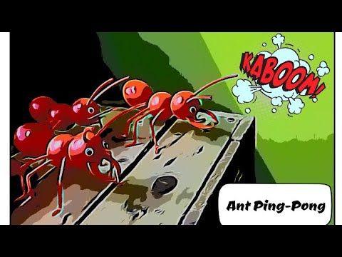 Kitasokongkita How To Make Ant S With Ping Pong Ball Cara Buat Semut Ping Pong Diyproject Youtube Di 2021 Bola Ping Pong Ping Pong Semut