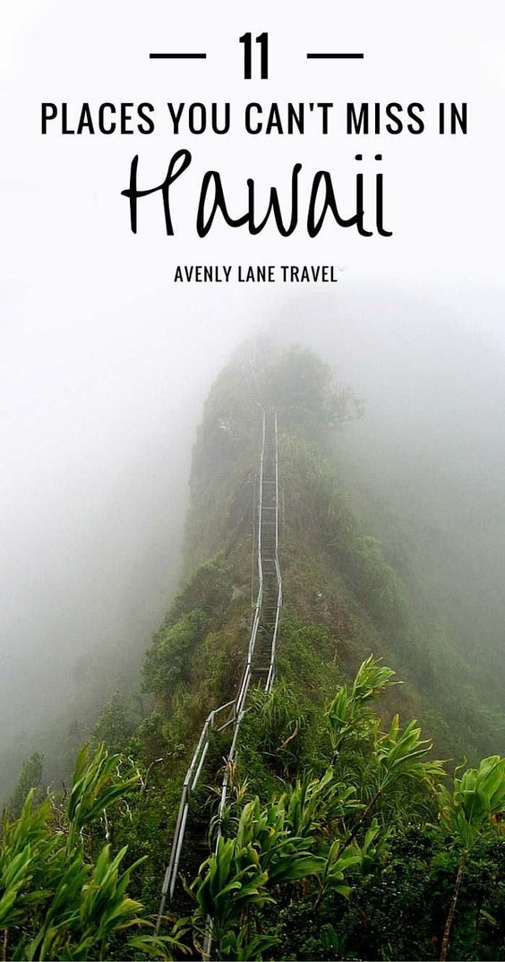 11 Places You Can't Miss In Hawaii (Oahu). A quick preview of the top spots you need to see on your next trip to Hawaii! Click through to Avenly Lane Travel to read the full post.