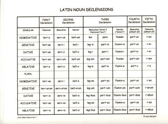 Should I decline Latin nouns that I incorporate into English text?