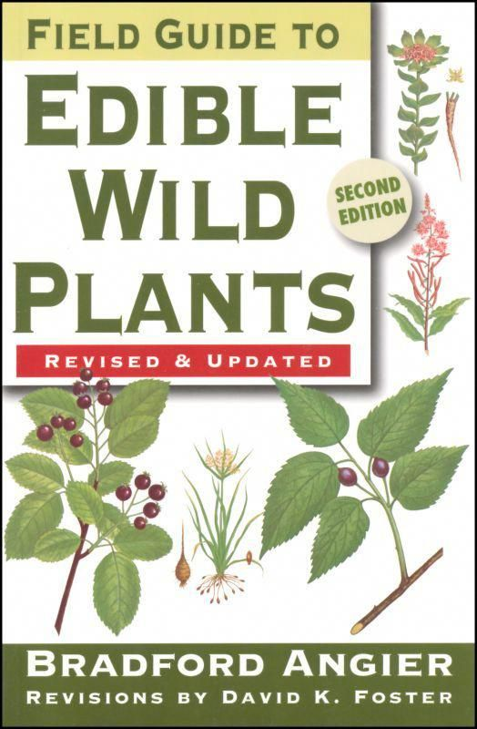 Field Guide To Edible Wild Plants Great Way To Learn About Plants