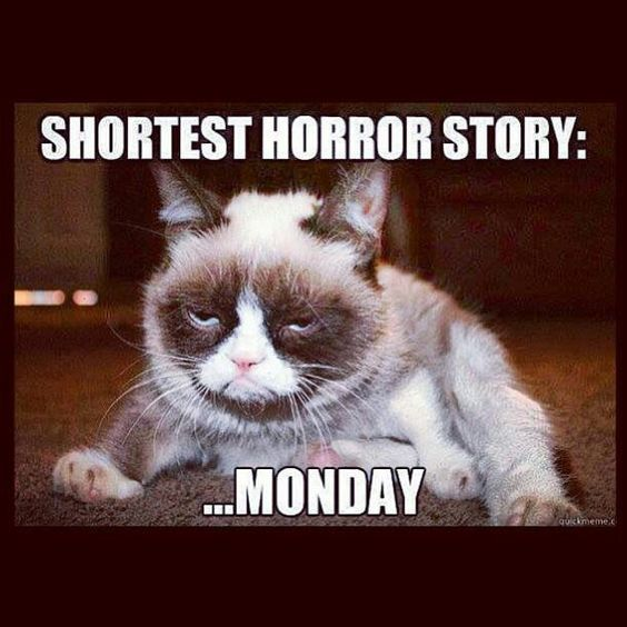 75 Funny Monday Memes For The Week Grumpy Cat Humor Funny Monday Memes Funny Cat Memes