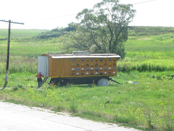 Mobile Beehives