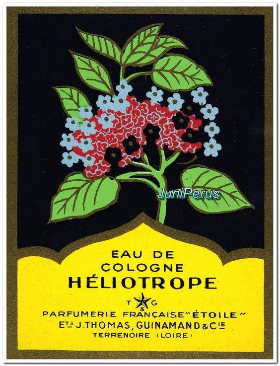 Eau de Cologne Héliotrope  Terrenoire (Loire), Parfumerie Française «Etoile», Ets. J. Thomas, Guinamand & Cie., 1920-1930